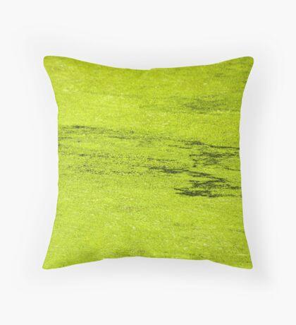 How Much Scum Could a Pond Scum Scum, If a Pond Scum Could Scum Scum? Solved! Throw Pillow