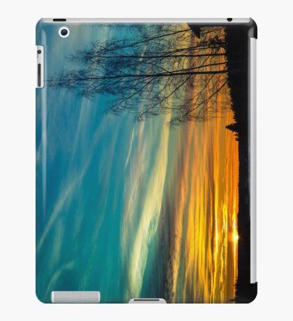 FINALLY [iPad cases/skins] iPad Case/Skin