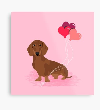 Dachshund dog breed heart balloons valentines day gift for pure breed lovers  Metal Print