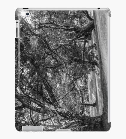 BALANCED BALLET [iPad cases/skins] iPad Case/Skin