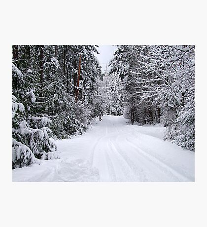 Snowy Country Road Photographic Print