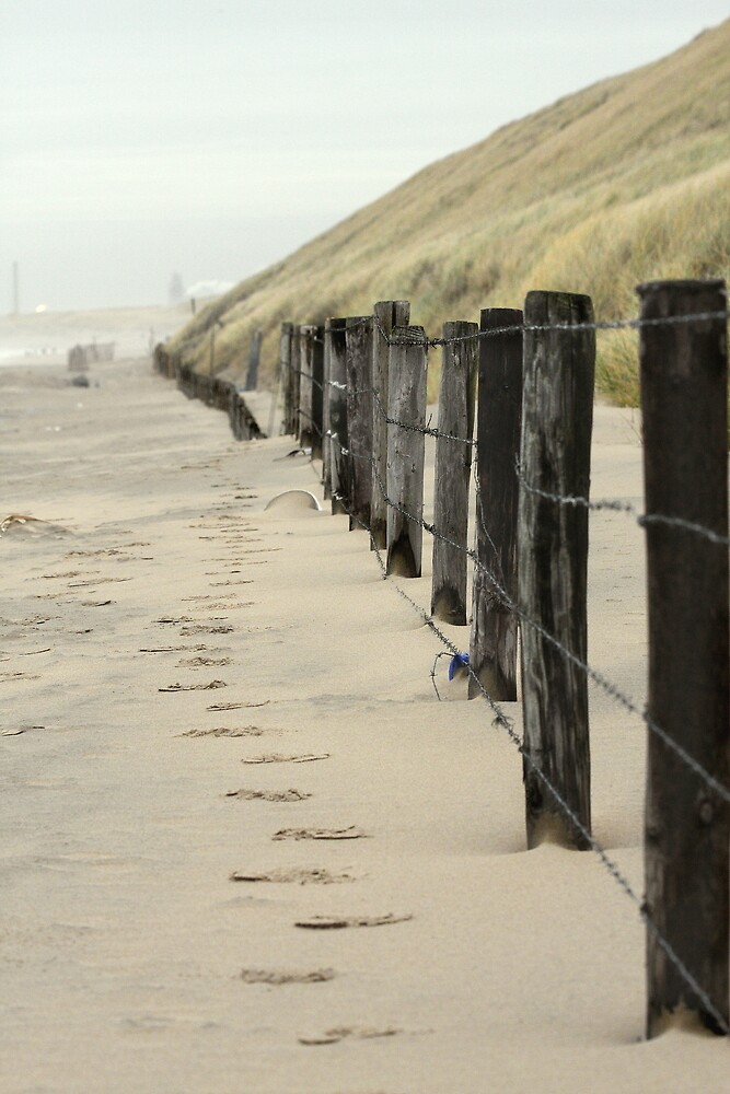 Fencing The Dunes by Evert Lancel