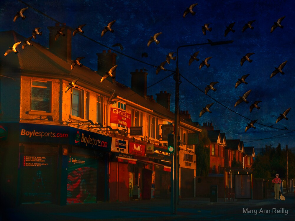 Calling Up the Birds by Mary Ann Reilly