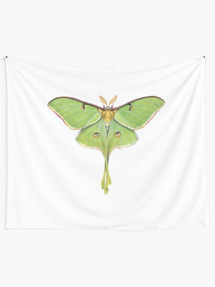 Alternate view of Luna Moth (Actias luna) II Tapestry