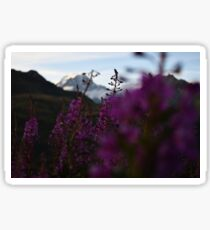 Sunsets over Mont Blanc Sticker