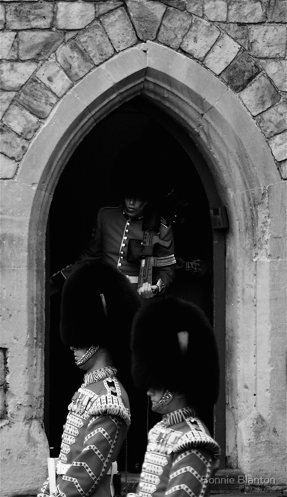 Royal Trepidation by Bonnie Blanton