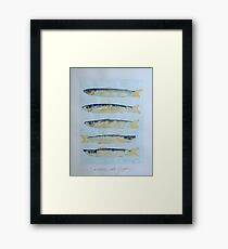 sardine alla griglia © patricia vannucci 2008  Framed Print