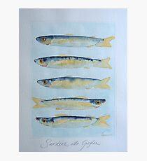 sardine alla griglia © patricia vannucci 2008  Photographic Print