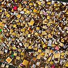 Love Locks in Paris by Buckwhite