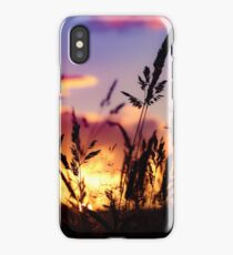 Crops and sunset iPhone Case/Skin