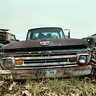 Abandoned 1961-1962 Ford F-100 Custom Pickup by mal-photography