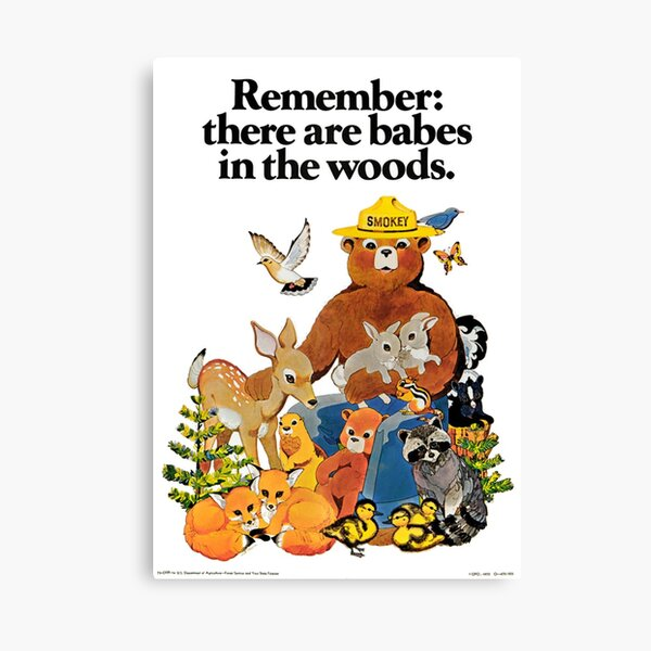 Remember there are babes in the woods. Canvas Print