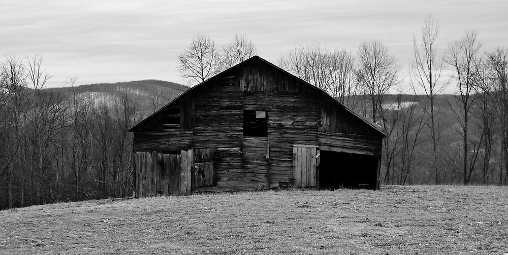 Old Barn by WMederski