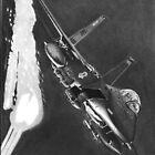 Eagle Flight by John Reardon