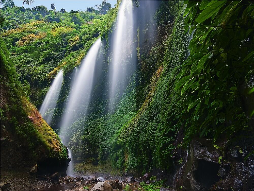 Madakaripura Waterfall by hanif