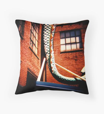 The Wonderment of Youth Throw Pillow