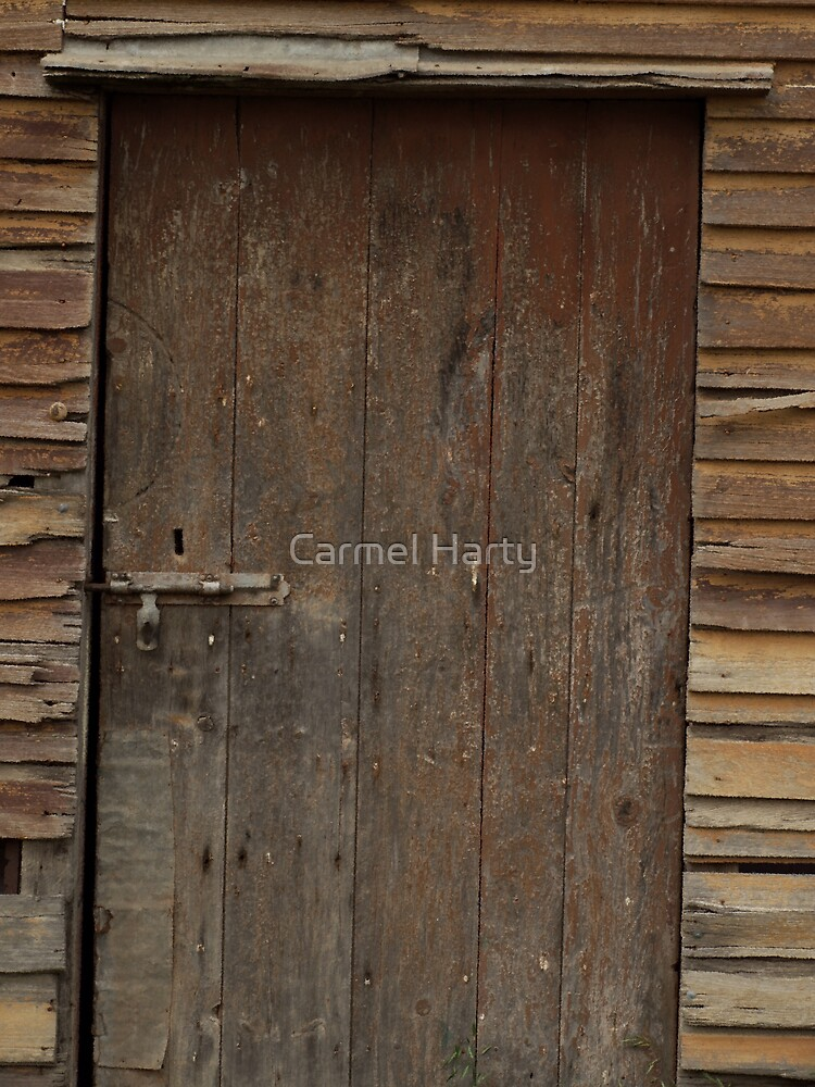 The crooked door by Carmel Harty