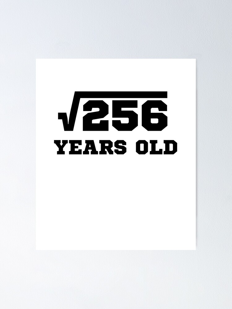 Square Root 256 Poster By Teetimeguys Redbubble