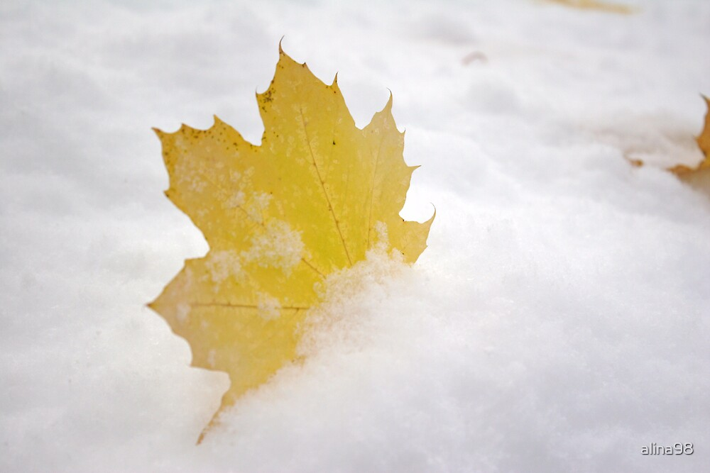 Winter and Fall Collide II by alina98