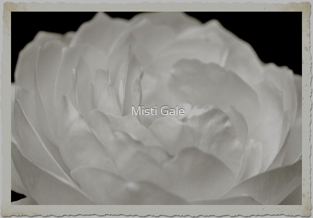 Pretty Rose In White by Misti Love