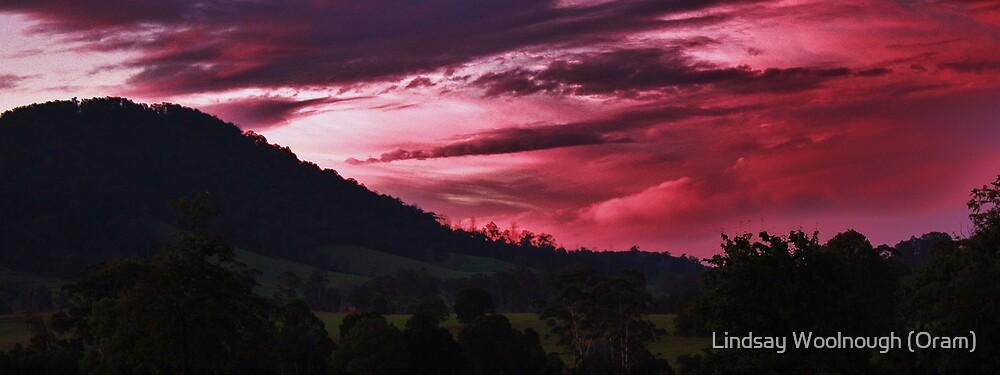 Blood Skies by Lindsay Woolnough (Oram)