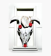 Red Flowers with Cow Skull Photographic Print