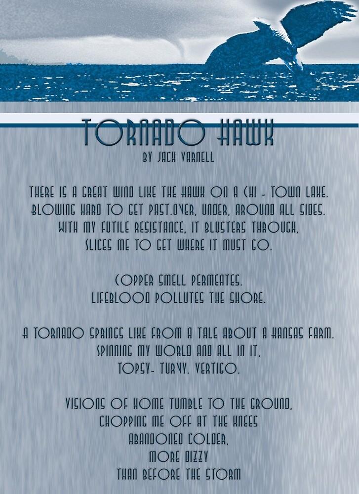 Tornado Hawk by emotionalorphan