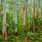 Yarra Ranges Mountain Ash Forest by Dai Wynn