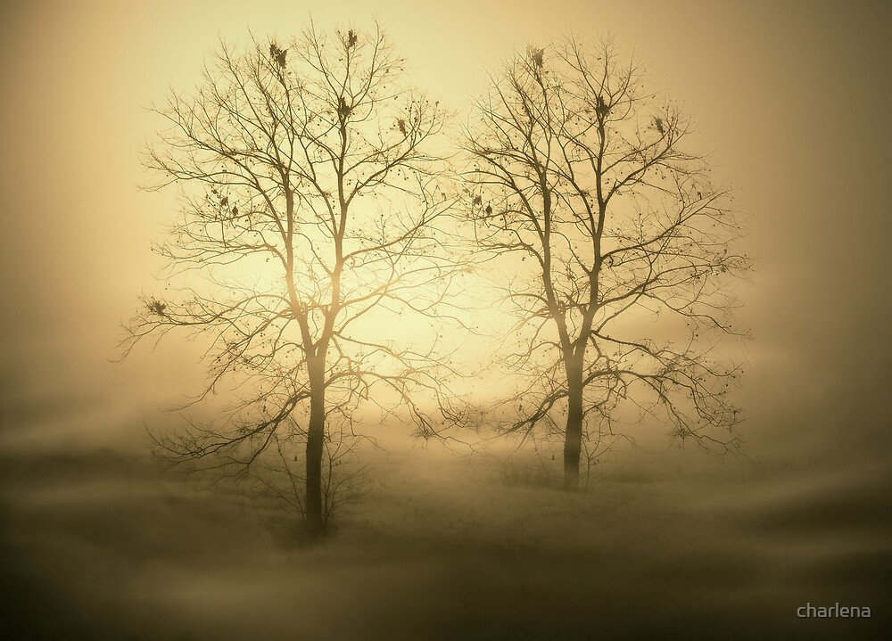 Lovers In The Mist by charlena