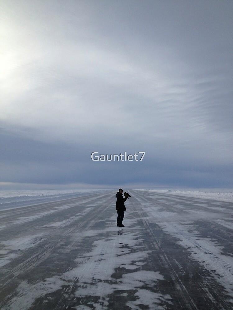 In the midst of a frozen desert... by Gauntlet7