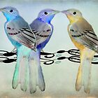 Pretty Birds by CarolM