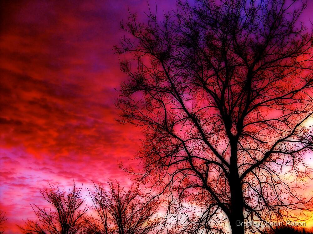 """""""Colourful Winter Sunrise"""" by Bradley Shawn  Rabon"""