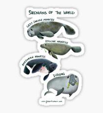 Sirenians of the World Sticker