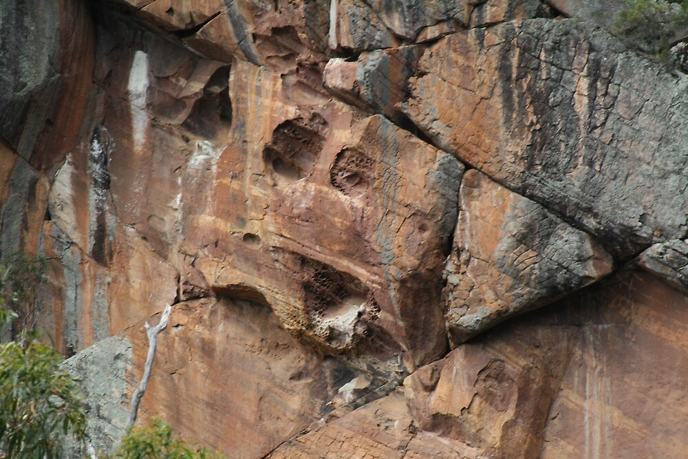 Rock Face by Lee Revell