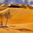 In the Empty Quarter.. by Peter Doré