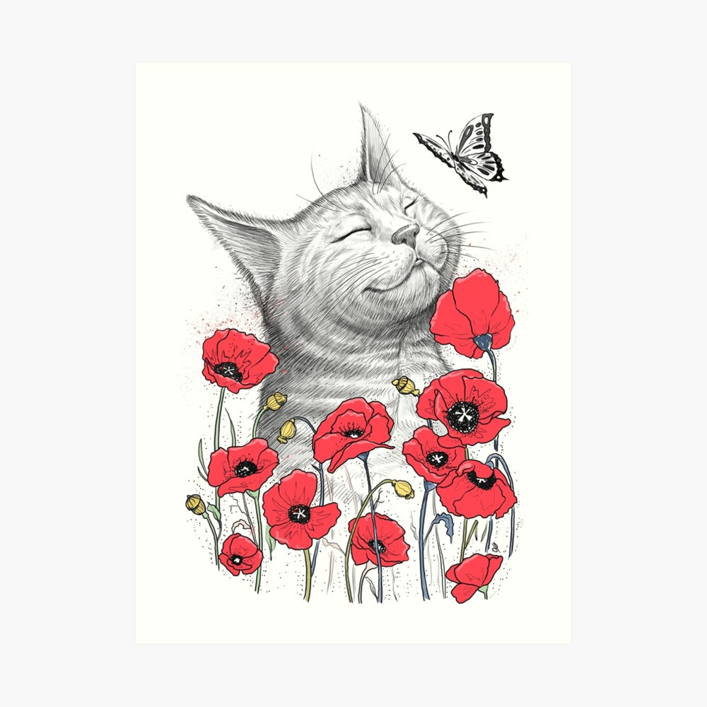 Cat in poppies Kunstdruck