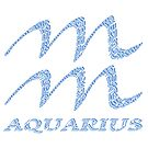 Aquarius Astrological Sign by Karotene