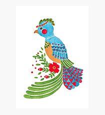 The Blue Quetzal Photographic Print
