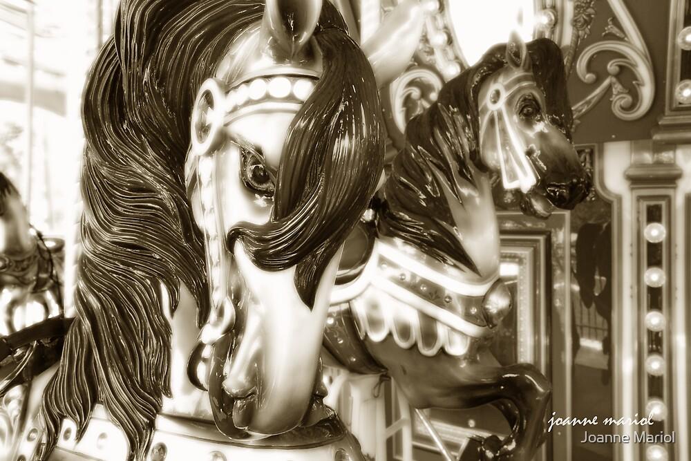 Carousel 19 by Joanne Mariol