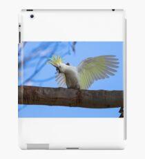 Sulphur Crested Cockatoo with Attitude iPad Case/Skin