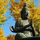 Buddha, Kyoto, Japan by sideways