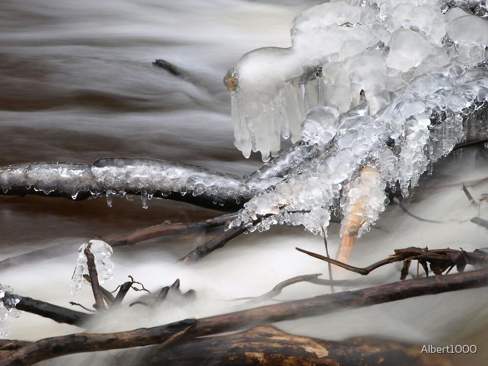 Winter's cold breath by Albert1000
