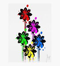 Multi coloured flower bouquet Photographic Print