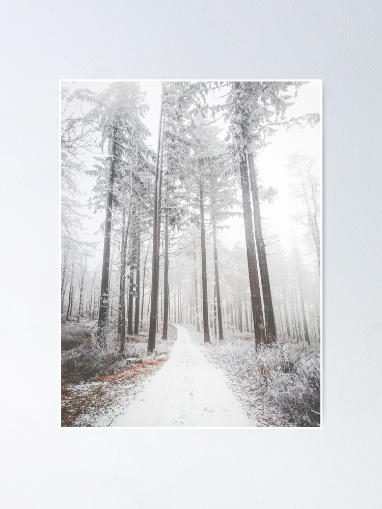 Mysterious Road In A Frozen Foggy Forest Poster By Patriklovrin Redbubble