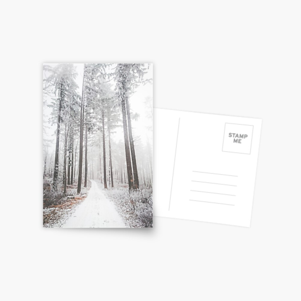 Mysterious road in a frozen foggy forest Postcard