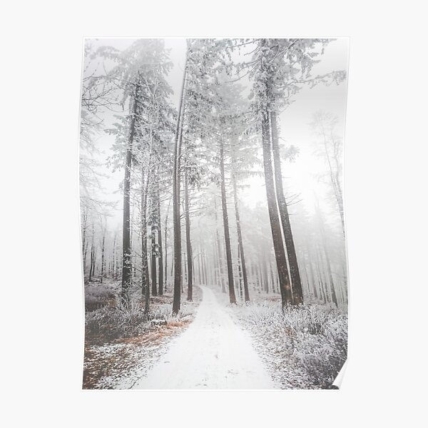 Mysterious road in a frozen foggy forest Poster