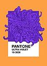 PANTONE Ultra Violet 2018 by Evgenia Chuvardina