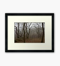 Twisting and Turning Framed Print