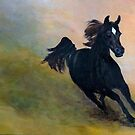 Gallope by Racheli