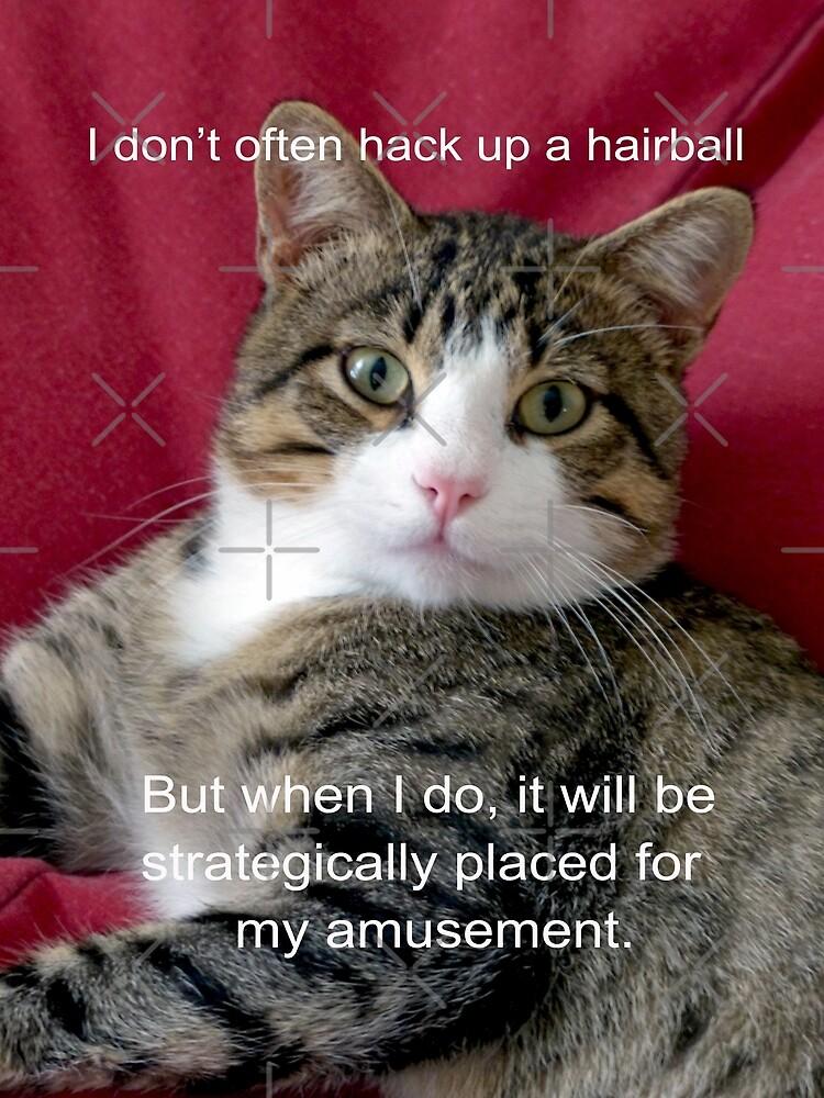 TJ Hairball Meme  by FrankieCat